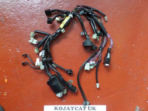 Yamaha FJR1300 Headlight Speedo Wiring Loom 2D2-84359-00 (USED)