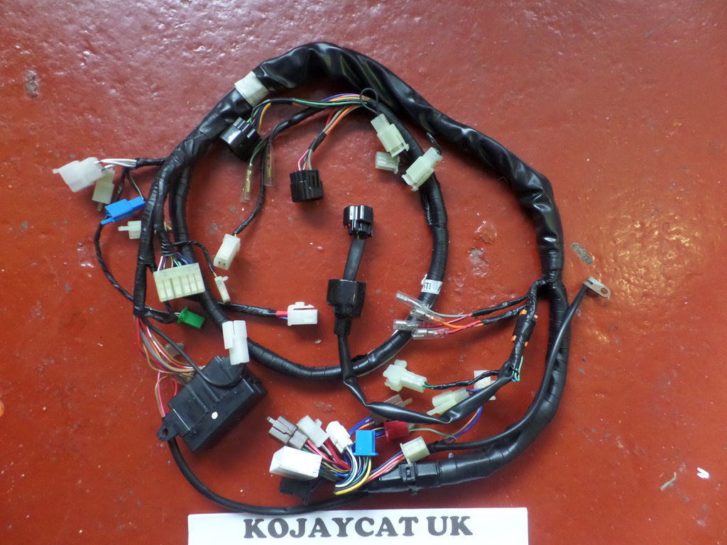 Yamaha FZS600 fazer 98-02 5DM-82590-00 Wiring Harness Connectors on